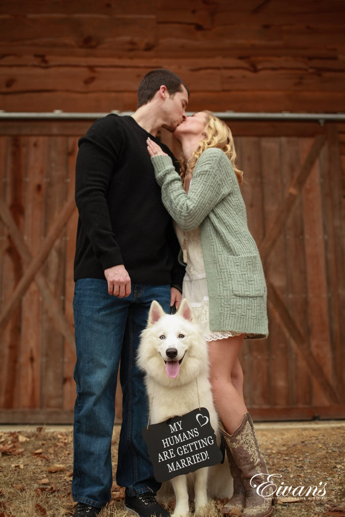 The happiness that this sign that the dog is holding shows just how happy everyone is about this couple finally coming together.
