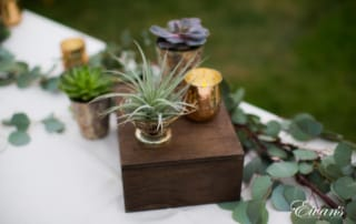 purple flower in brown wooden box