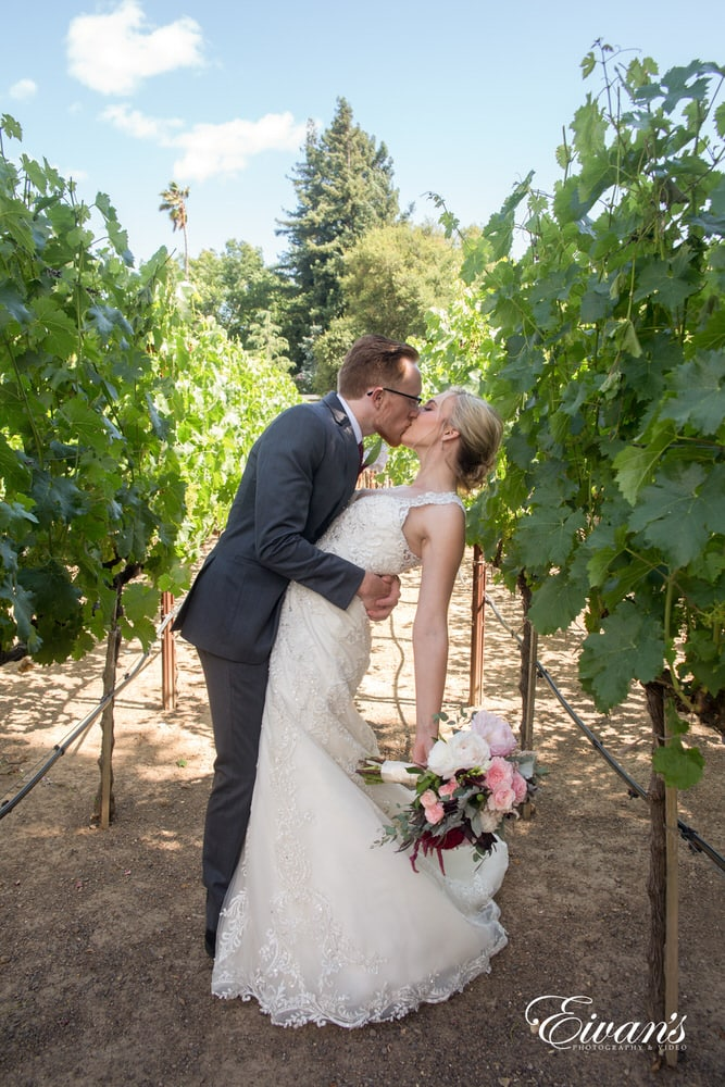 Dipping his princess bride in between the walkways of the wine grapes as they are mesmerized by love.
