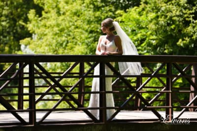 Standing so beautifully on a bridge the bride has the sun shining down on her making her shimmer.
