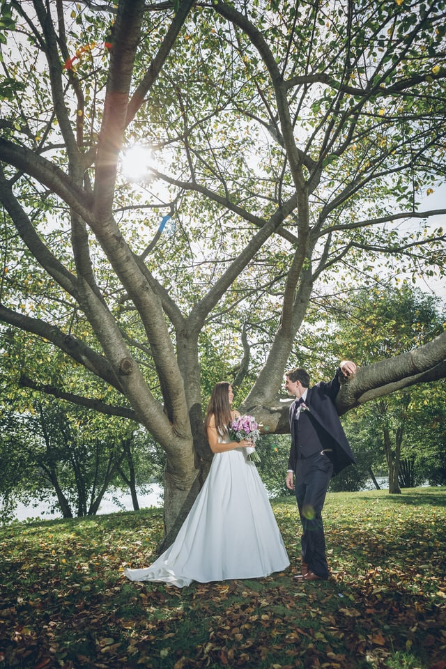 newlyweds posed in front of a tree, new jersey wedding photographer packages and pricing