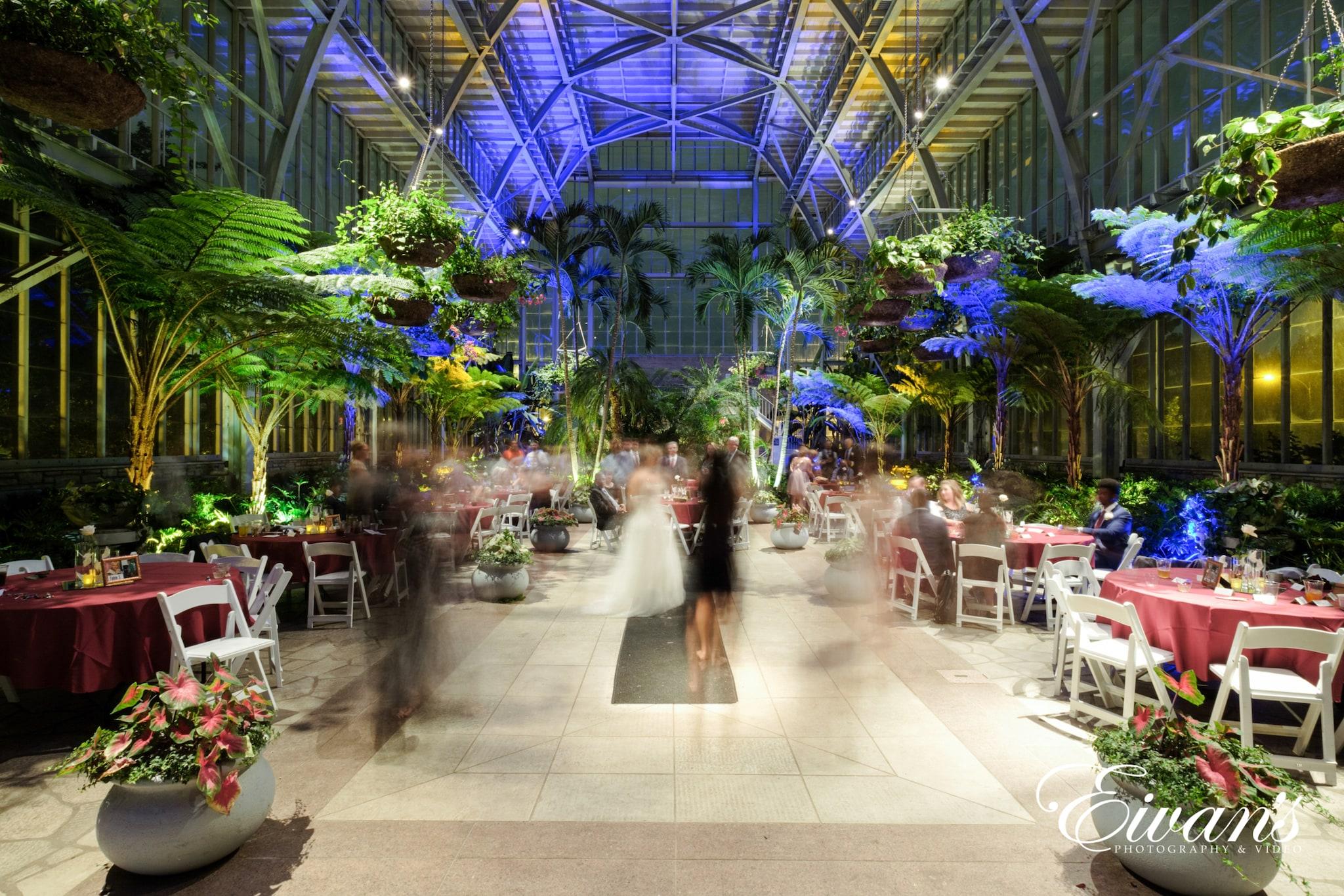 image of an indoor garden wedding venue